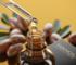 Arganöl für Haare von Nanoil